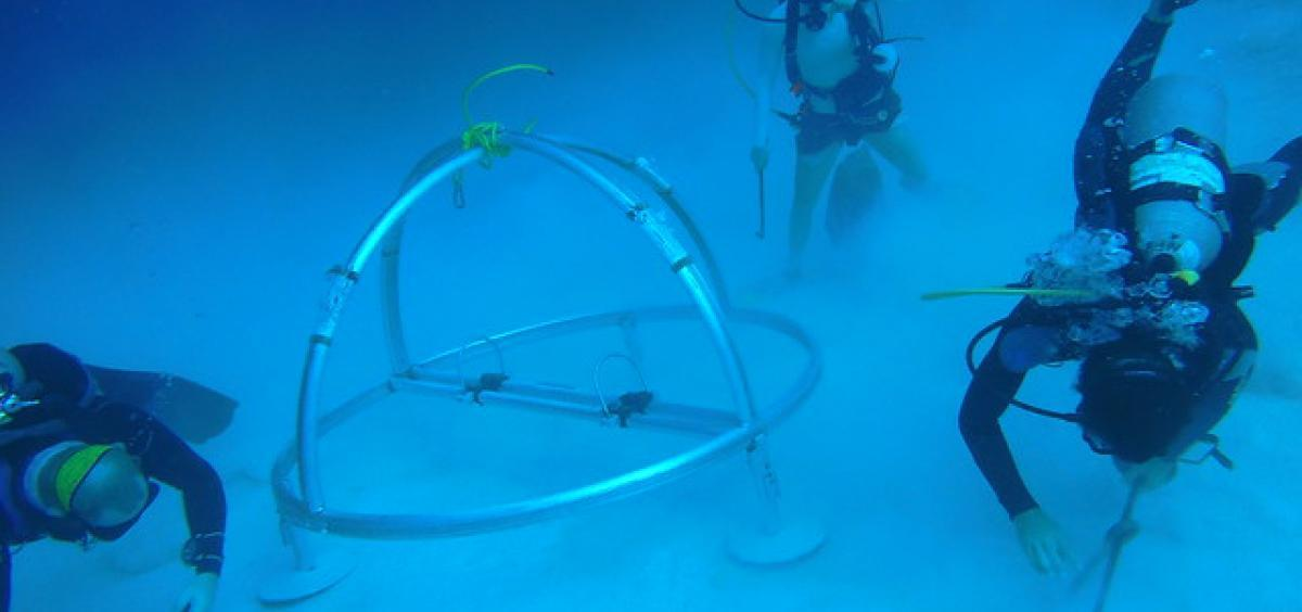 Divers installing an autonomous underwater hydropohone