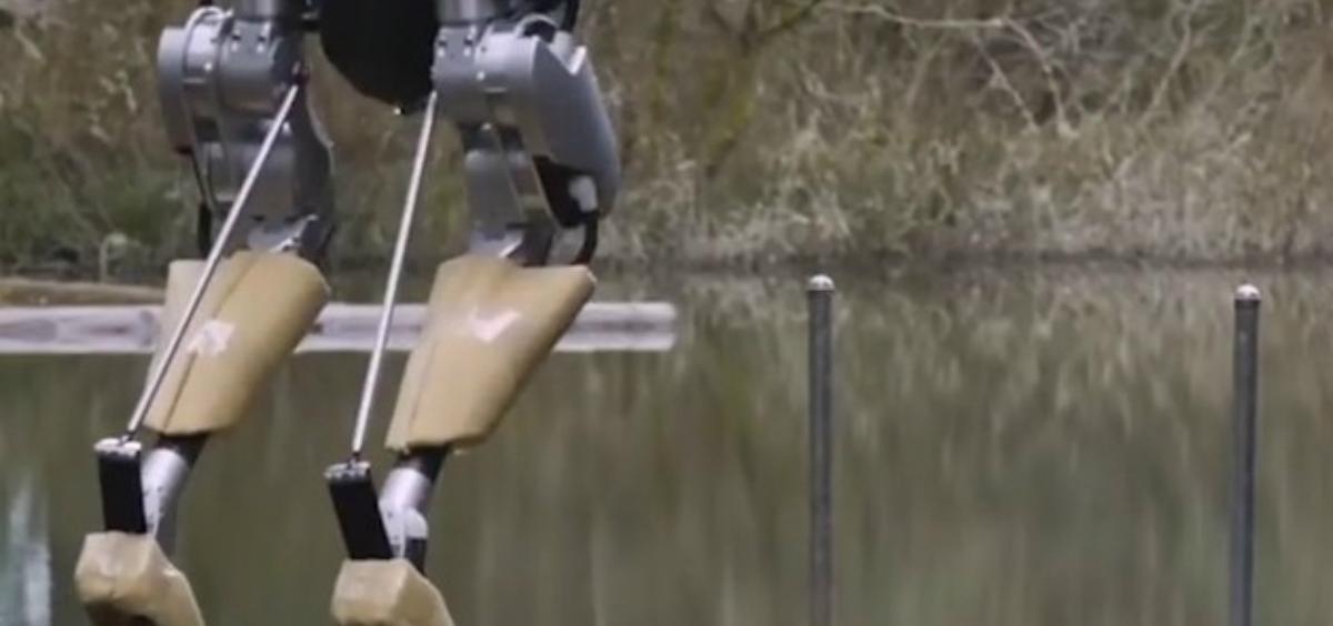 robot cassie