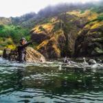 Cascades to the Coast students snorkel